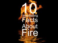 10 Interesting Facts About Fire