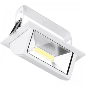 45W Adjustable IP65 Non-Dimmable Rectangular LED Wallwasher
